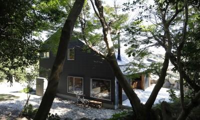 庭とつながる家~自然を身近に感じる家~ (外観)