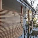 斜光の家の写真 外観