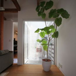 光庭の家 – 敷地条件を諦めない改修<リノベーション> – (光庭)