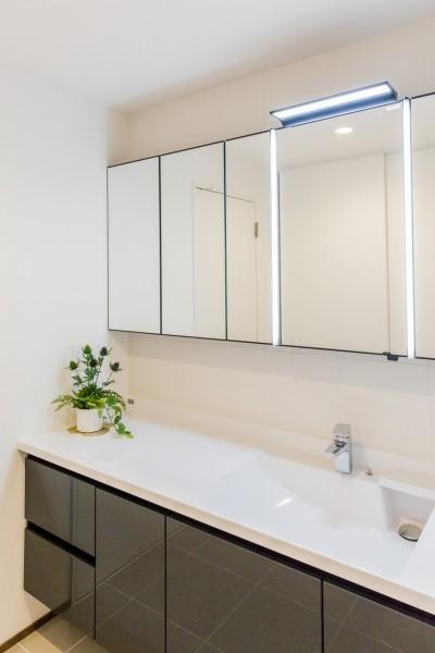 洗面 (家で過ごす時間をもっと特別なものに ホテルライクな暮らし)