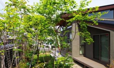 古河の家 (外観(雑木林))