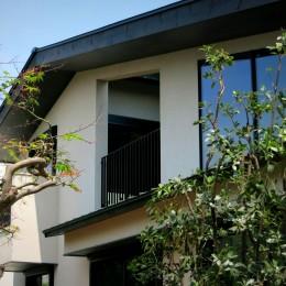 杉並の住宅 大きな切妻屋根の家 (建物外観)