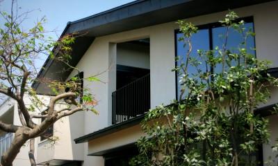 杉並の住宅 大きな切妻屋根の家