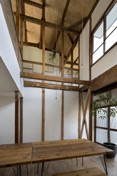 Renovation in Nekogahora (吹き抜け)