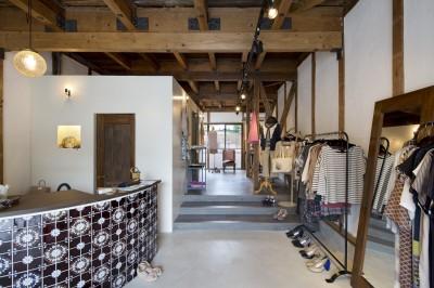 店舗部分 (Renovation in Nekogahora / 天井と壁を取り払い構造補強により豊かさを得た住宅兼店舗)