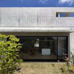 高台の家 –コンクリート打ち放し – (南からの外観)
