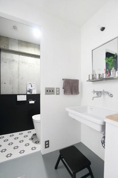 洗面室・トイレ (ナチュラル×ハード)
