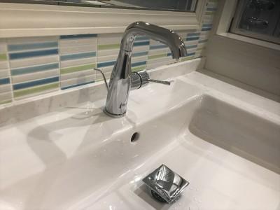洗面 (広いバスタブのあるこだわりの浴室)