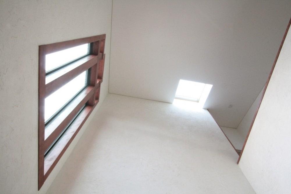 善福寺の家(広い庭とビルトインガレージのある2世帯住宅) (玄関(吹抜けの天井見上げ))