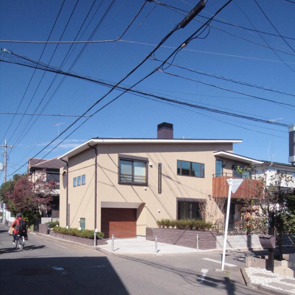 大泉学園の家(薪ストーブを設けた吹抜けを中心とした自然素材の家) (外観(敷地西側の主要道路から建物の南面を望む))