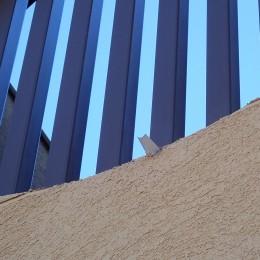 大泉学園の家(薪ストーブを設けた吹抜けを中心とした自然素材の家) (超小型の樋)
