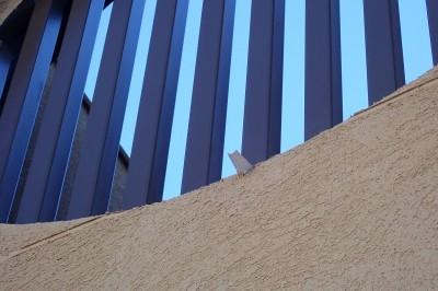 超小型の樋 (大泉学園の家(薪ストーブを設けた吹抜けを中心とした自然素材の家))