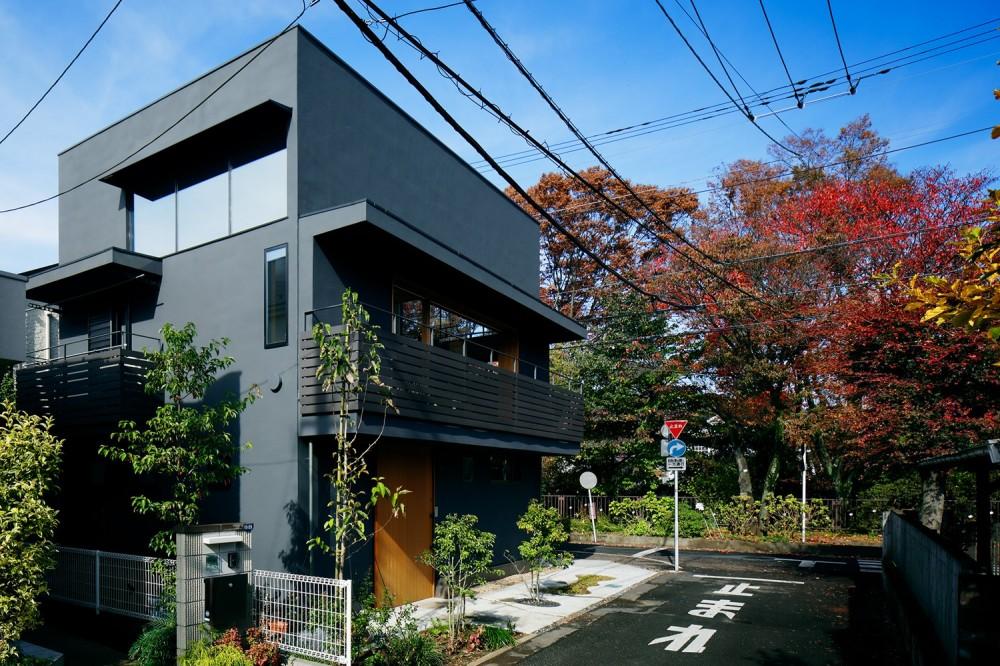 桜町の住宅 (南東からのながめ)