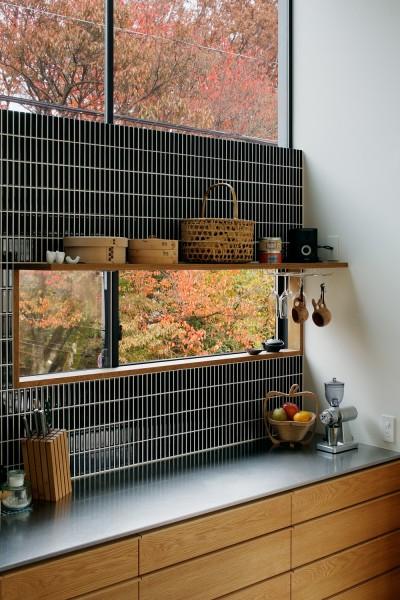 キッチンの小窓からの風景 (桜町の住宅)