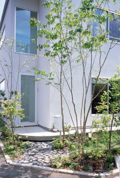 武蔵小金井の家_敷地全体を使いこなすコンパクトな住まい (外観)