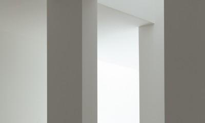 武蔵小金井の家_敷地全体を使いこなすコンパクトな住まい (階段)