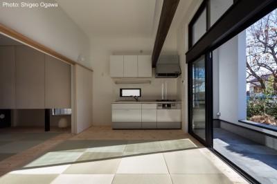 親世帯リビング (猫と住む家 横浜の二世帯住宅OUCHI-40)