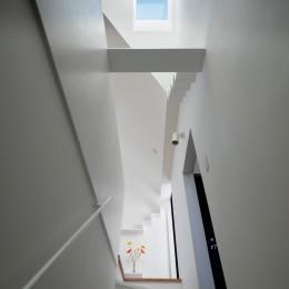 猫と住む家 横浜の二世帯住宅OUCHI-40 (猫のブリッジ見上げる階段)