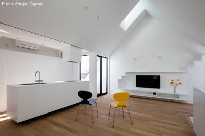 天窓から採光する空間 (猫と住む家 横浜の二世帯住宅OUCHI-40)