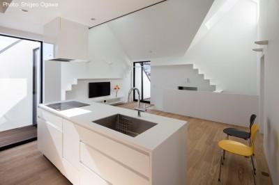 アイランド型オーダーキッチン (猫と住む家 横浜の二世帯住宅OUCHI-40)