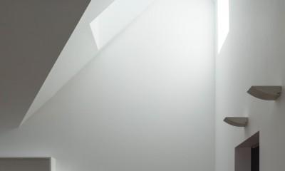 猫と住む家 横浜の二世帯住宅OUCHI-40 (猫の階段)