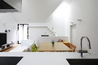 猫が駆け下りるキャットウオーク (猫と住む家 横浜の二世帯住宅OUCHI-40)