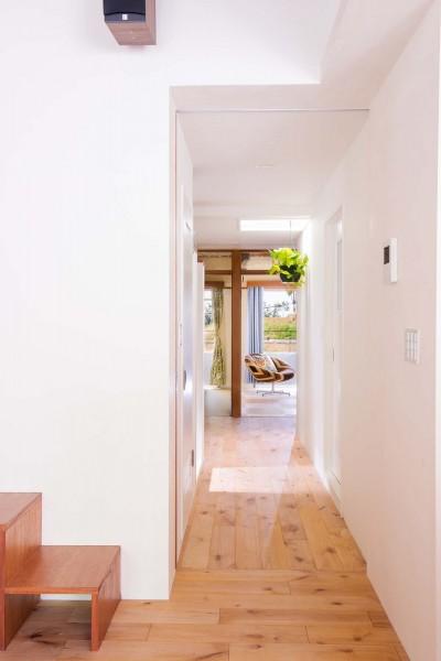 廊下 (park.~どの窓からも緑が見える、自然光の心地良いやすらぎ空間~)