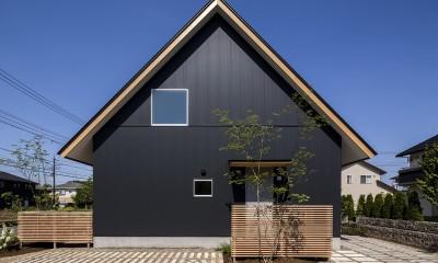 castor/単純な大屋根形状に普遍的な間取りを、立体的断面形状で組み込んでみる。
