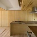 castor/単純な大屋根形状に普遍的な間取りを、立体的断面形状で組み込んでみる。の写真 ダイニングキッチン