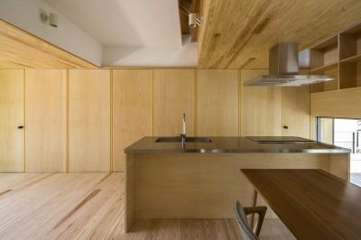 ダイニングキッチン (castor/単純な大屋根形状に普遍的な間取りを、立体的断面形状で組み込んでみる。)