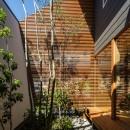 elnath/平面的、立体的な斜めの壁によって構成された空間を考えてみる。の写真 中庭