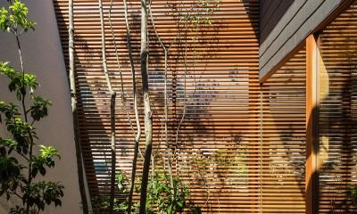 elnath/平面的、立体的な斜めの壁によって構成された空間を考えてみる。 (中庭)