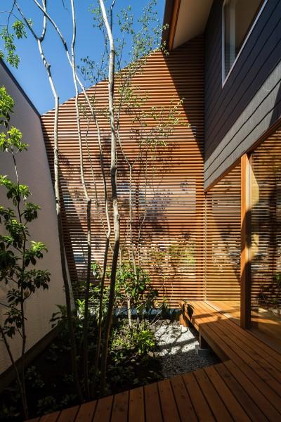 中庭 (elnath/平面的、立体的な斜めの壁によって構成された空間を考えてみる。)