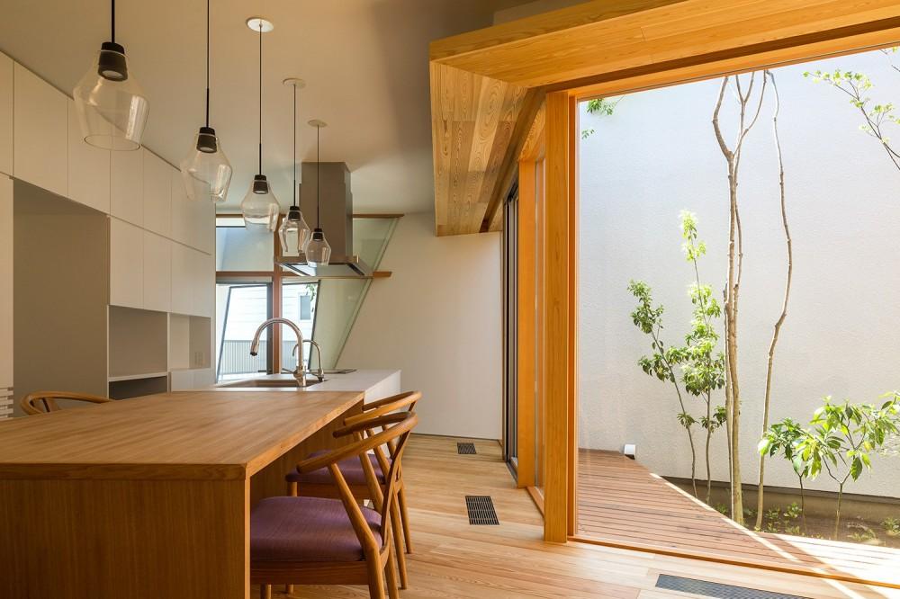 elnath/平面的、立体的な斜めの壁によって構成された空間を考えてみる。 (ダイニングキッチン)