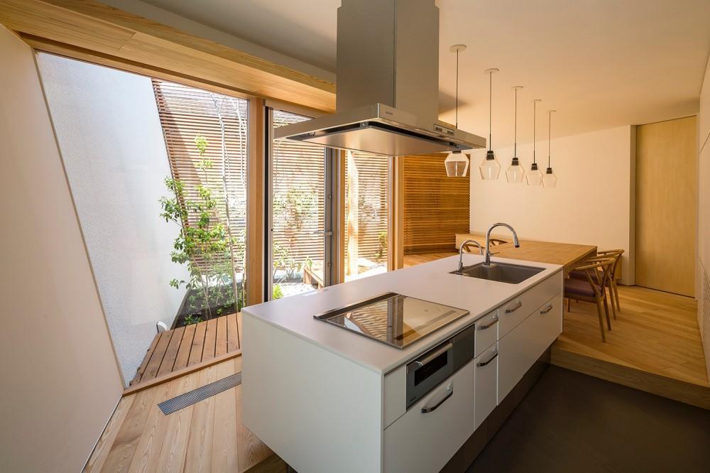 elnath/平面的、立体的な斜めの壁によって構成された空間を考えてみる。 (キッチン)