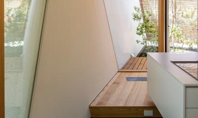 elnath/平面的、立体的な斜めの壁によって構成された空間を考えてみる。 (キッチン・中庭)