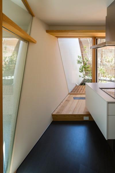 キッチン・中庭 (elnath/平面的、立体的な斜めの壁によって構成された空間を考えてみる。)