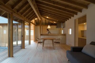 姉ヶ崎の家 大屋根と3つの庭|新築 (居間と連なる中庭、台所、客間)