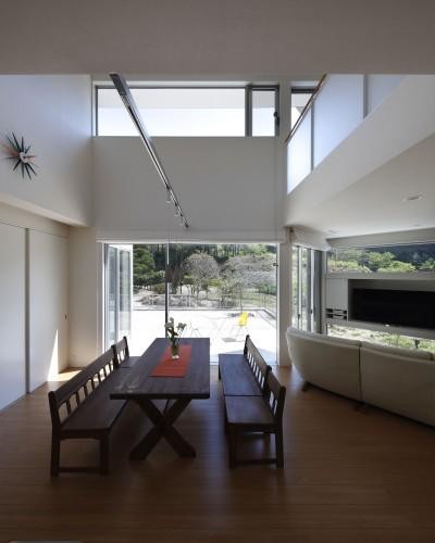 キッチンからドッグランを見る (元山城に建つドックランのある家 -滋賀の家-)