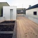 中庭と大きなルーバーのある家|30坪の狭小住宅の写真 屋上
