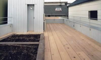 中庭と大きなルーバーのある家|30坪の狭小住宅 (屋上)