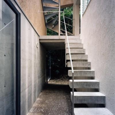 中庭 (ホタルの棲む竹薮と共生 - 中庭のある15坪の狭小住宅|春日町の家)