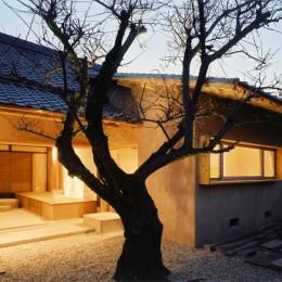 築 500年の旧家リノベーション|土間のある家 (中庭)