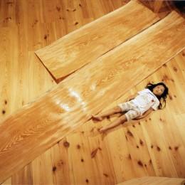 肥松単板のあかり|杢 -Translucent:時の記憶 (素材)