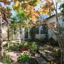 古民家移築のゲストルームを住宅に/歴梁の写真 主庭