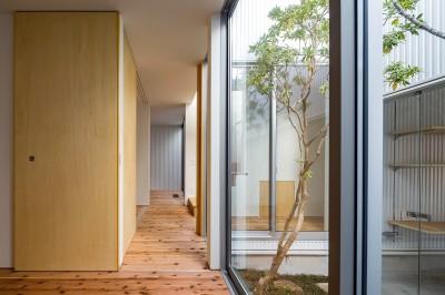 寝室 (zubenelgenubi/囲われた2つの庭を立体的に多角的に眺められるかたちを考えてみる。)