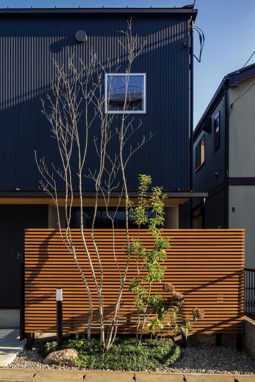 zubenelgenubi/囲われた2つの庭を立体的に多角的に眺められるかたちを考えてみる。 (外観)