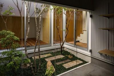 中庭 (zubenelgenubi/囲われた2つの庭を立体的に多角的に眺められるかたちを考えてみる。)