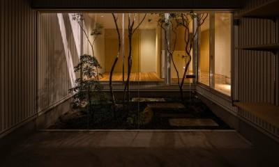 zubenelgenubi/囲われた2つの庭を立体的に多角的に眺められるかたちを考えてみる。 (中庭)