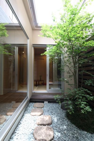 中庭 (住之江の元長屋 | ビフォーアフター放映 | 築74年の元長屋に光と風を)